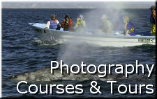 Photography Courses and Tours
